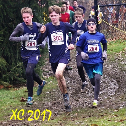 pictures from 2017 cross country season